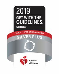 Get with Guidelines Stroke Care Icon