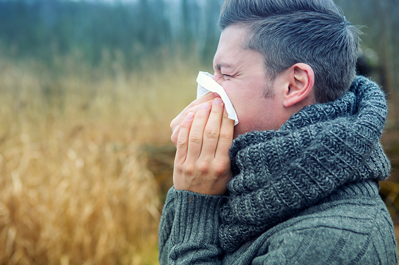 Are Seasonal Allergies Causing Sniffles? Here's How to Feel Better