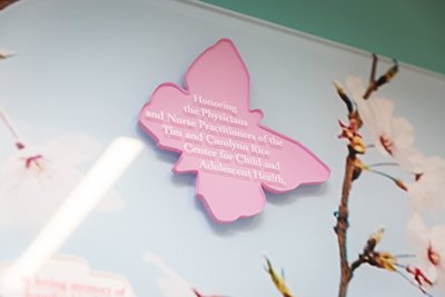 Butterfly Donor Wall